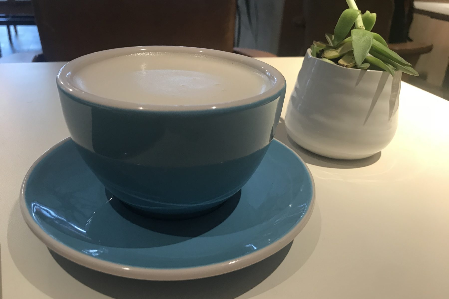 a coffee in a blue cup next to a succulent in a white container